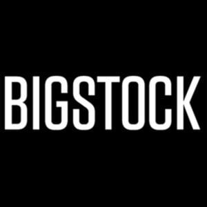 BigStock Coupon Codes Logo